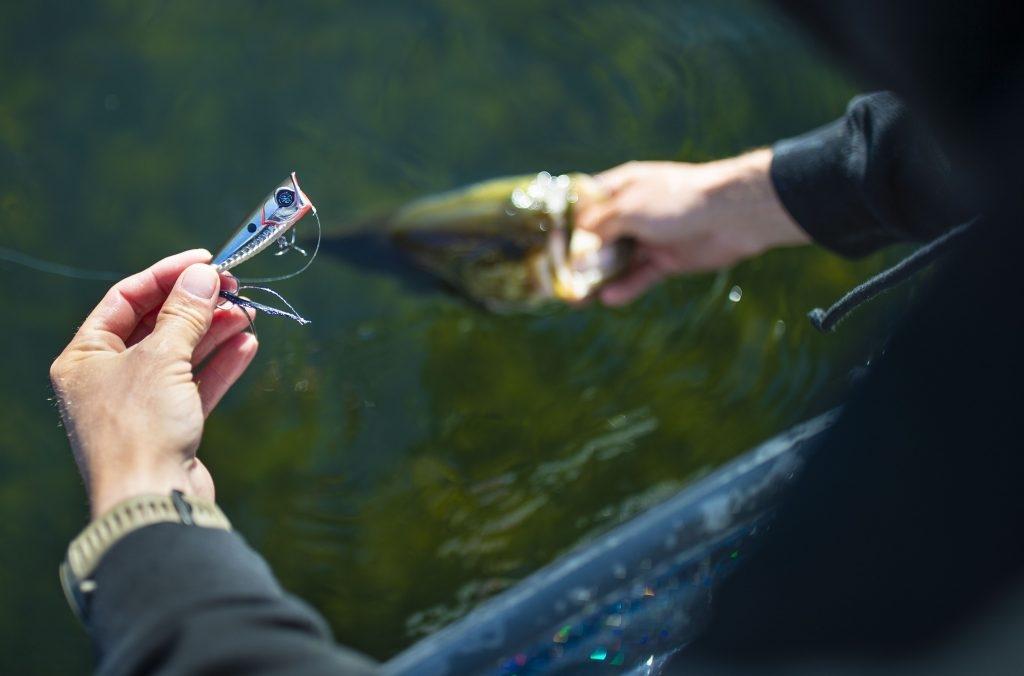 バス釣りによくある、2ジャーク1ポーズの謎