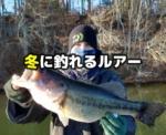 冬のバス釣り:冬に釣れるルアーとは