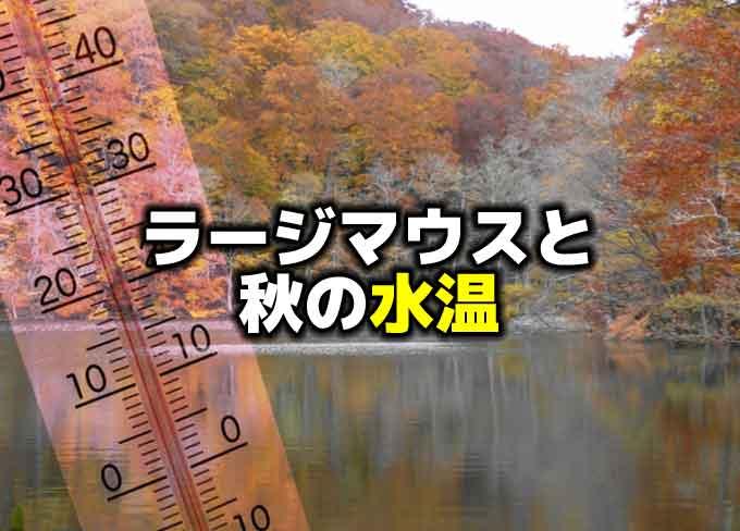 秋の水温とブラックバス(ラージマウスバス)の生態
