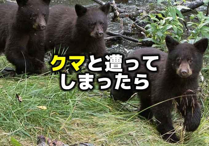 釣りをしていて熊(ツキノワグマ)と遭遇してしまったら