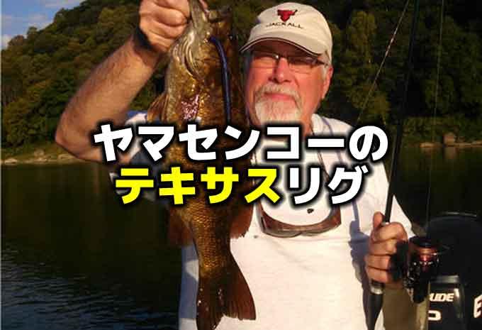 ヤマセンコーのテキサスリグが釣れるってマジ?:ワッキーリグだけじゃないヤマセンコーの使い方