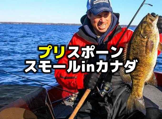 プリスポーンのスモールマウスバスの釣り方:カナダ・エリー湖に学ぶ
