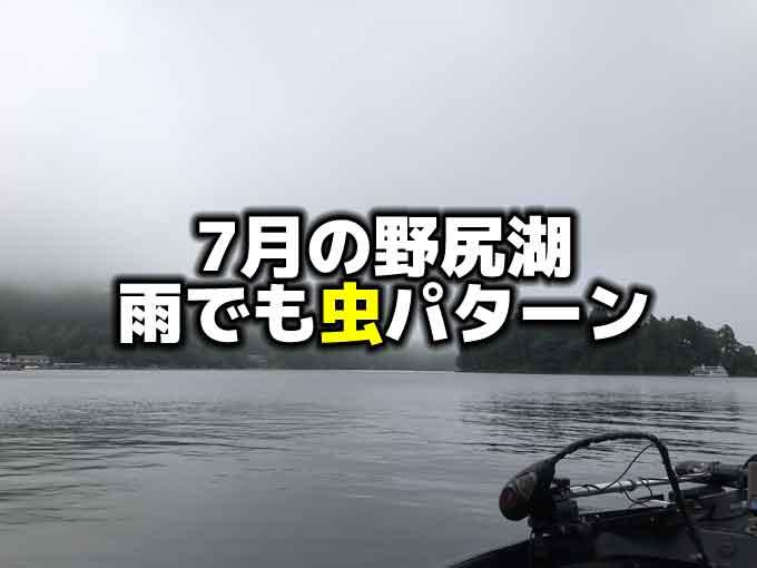 7月の野尻湖:梅雨でも虫パターン&バックアップでフォロースティックのネコリグ