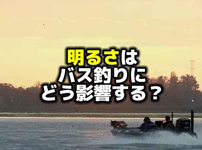 明るさはバス釣りにどう影響するのか?【バスの食べ物】