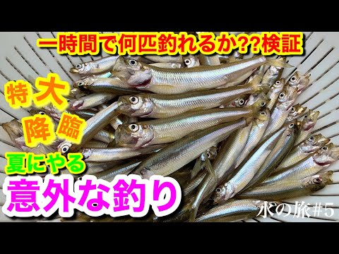 水野浩聡プロYoutubeチャンネル「水の旅」にて木崎湖ワカサギ釣り動画アップされました