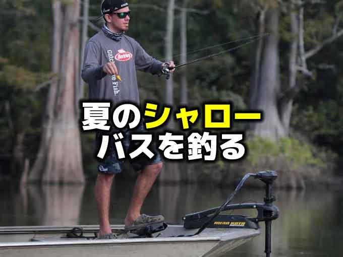 夏のシャローバスを釣るには