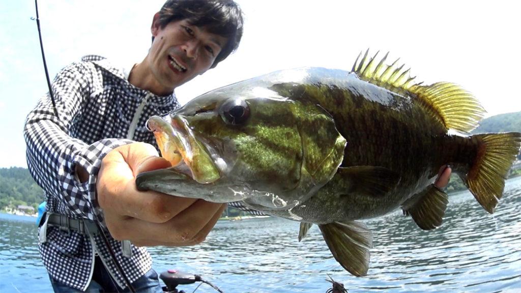 8月の野尻湖:虫パターン(青木虫MID)とダウンショット(ソアリンシャッド)