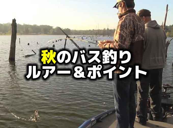 秋のバス釣りを制するルアー&ポイント