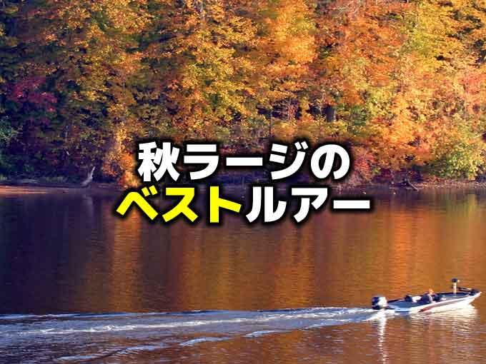 初秋から晩秋のラージマウスバスを釣るルアーはこれ