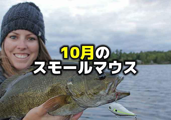 10月のスモールマウスバスと野尻湖パターン