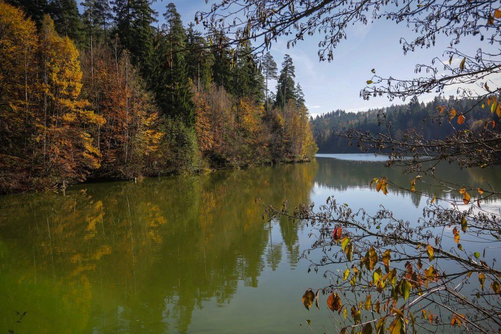 秋のハイランドリザーバーはディープの地形変化を釣れ!【山間ダム湖の秋のバス釣り】