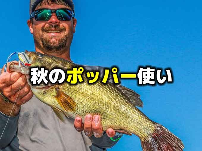 秋はポッパーの出番!?秋のトップウォーターバス釣り戦略