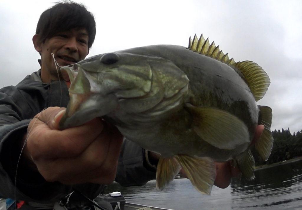 木崎湖の10月ディープレンジのバス釣り【サワムラ・リッジ3インチのロングリーダーダウンショット】