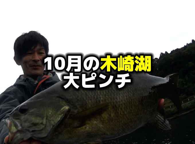 10月の木崎湖バス釣り大ピンチ!救ってくれたのはサワムラのあのワームのダウンショット