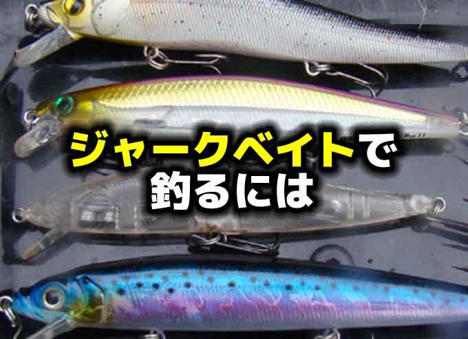 【初心者向き】ジャークベイトで釣る方法
