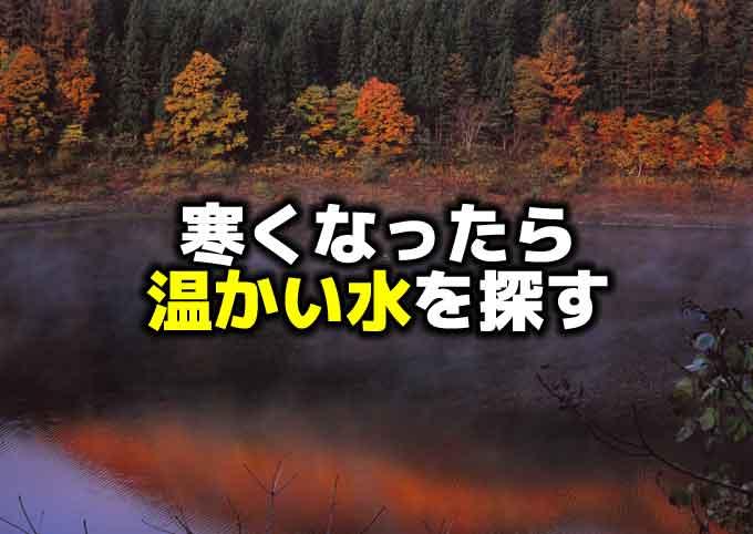 【冬のバス釣り】寒い時期は温かい水を探そう