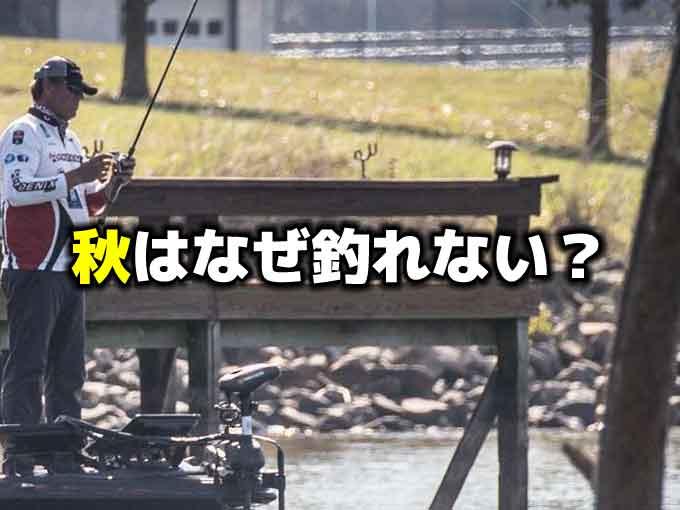 なぜ秋のバス釣りは難しいのか?:釣れない理由と解決策