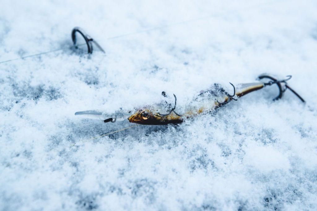 湖のタイプ別:冬から晩冬への変化を追う