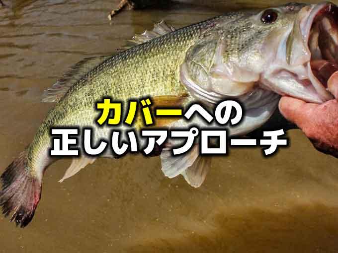 バス釣りの基本!? 目の前のカバー、あなたならどう釣りますか?