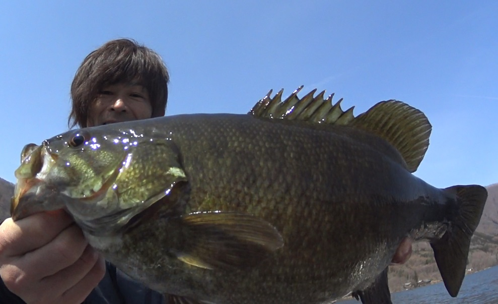 春の木崎湖はジグヘッドのボトスト!リハビリバス釣りでナイスバス