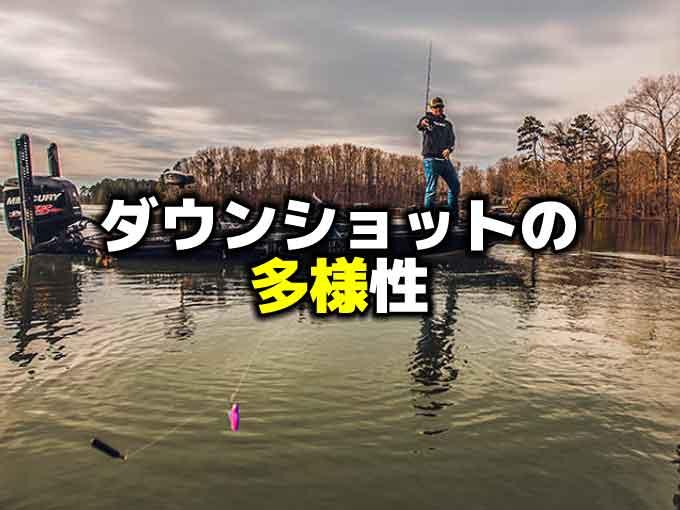 バーサタイルなダウンショットリグ【高い汎用性】