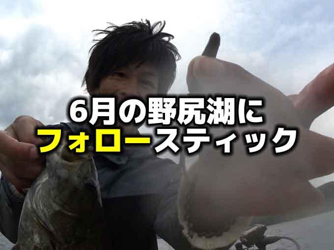 6月の野尻湖バス釣り:フォロースティックのネコリグはアフタースポーンのスモールマウスバスに効く
