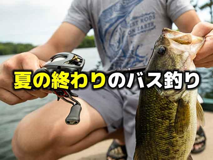 【晩夏】夏の終わりのバス釣り