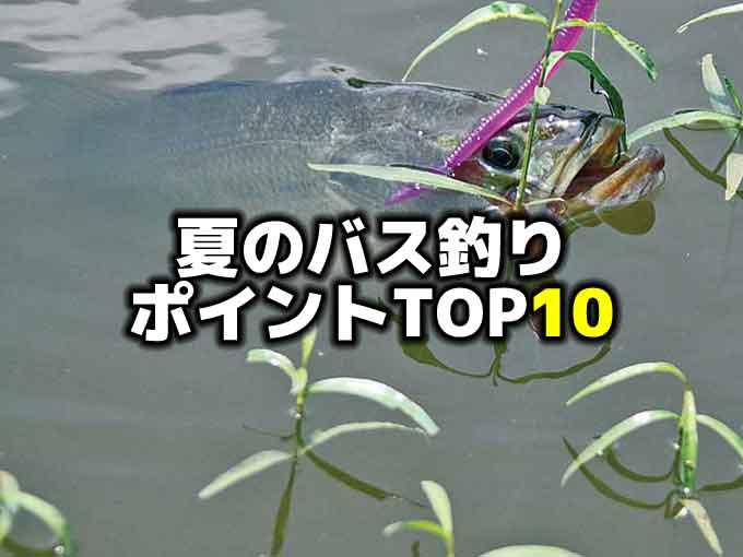 夏のバス釣りポイントTOP10