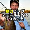夏のビッグスモールマウスバスを釣る7つのこと   バス釣りルアー・ワームのテクニック