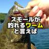 スモールマウスバスが釣れるワームと言えば【アメリカ版】 | バス釣りルアー・ワームの